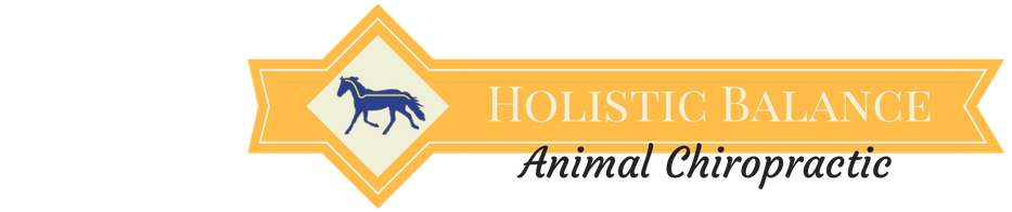 Holistic Balance